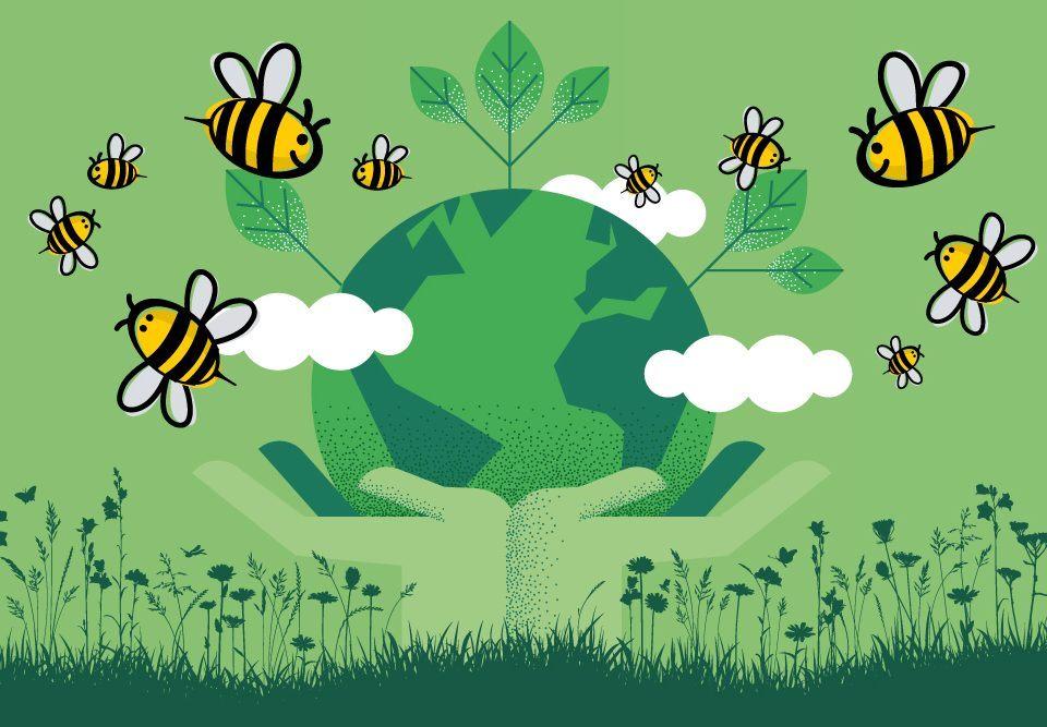 Wir engagieren uns für den Klimaschutz und pflanzen 10.000 Bäume in Aufforstungsprojekten in Afrika.