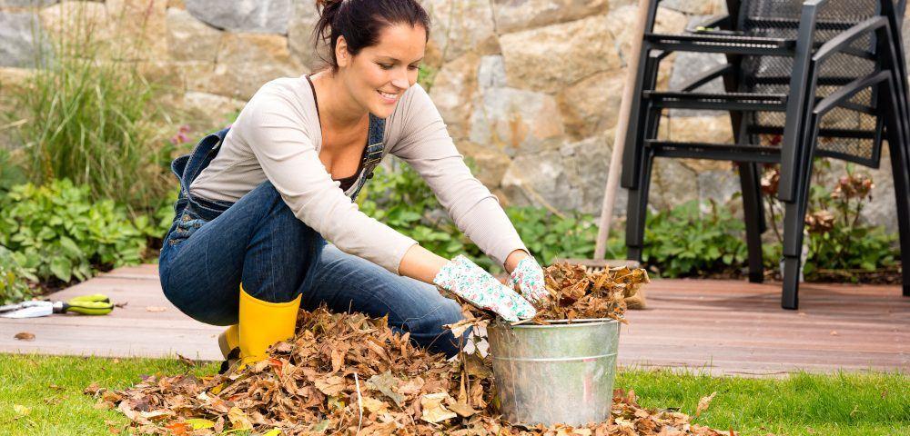 Garten-im-Herbst